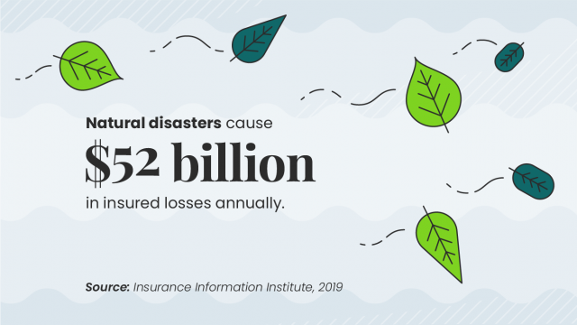 losses to Natural Disasters