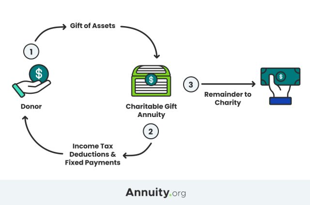 Infographic showing how a charitable gift annuity works